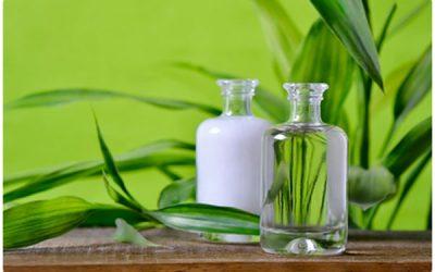 Bienvenidos al Blog de El Rincón del Perfumista